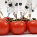 De ce sunt profund anticrestine organismele modificate genetic
