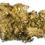 Specialisti ai Academiei de Studii Economice despre Rosia Montana: Aurul trebuie si poate sa ramana in Romania!