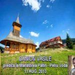 Danion Vasile – Predica la Mănăstirea Paltin la Duminica a 7-a după Rusalii