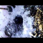 VIDEO: Prospectiuni SA – demonstratie de tupeu si minciuna sub privirile ingaduitoare ale autoritatilor nemtene