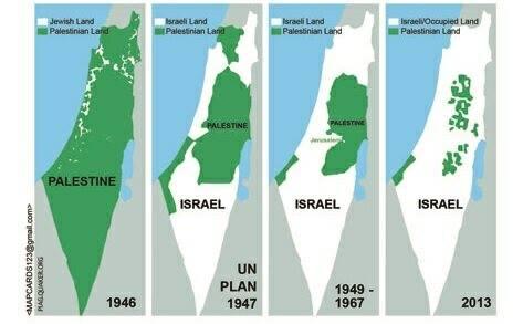 israel genocid
