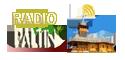 logo-radio-paltin